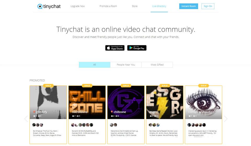 TinyChat Opinión 2021